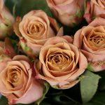 rosas cafe