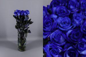 rosas de color azul