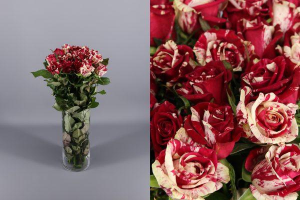 rosas jaspeadas