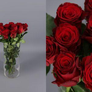 rosas rojas rhodos