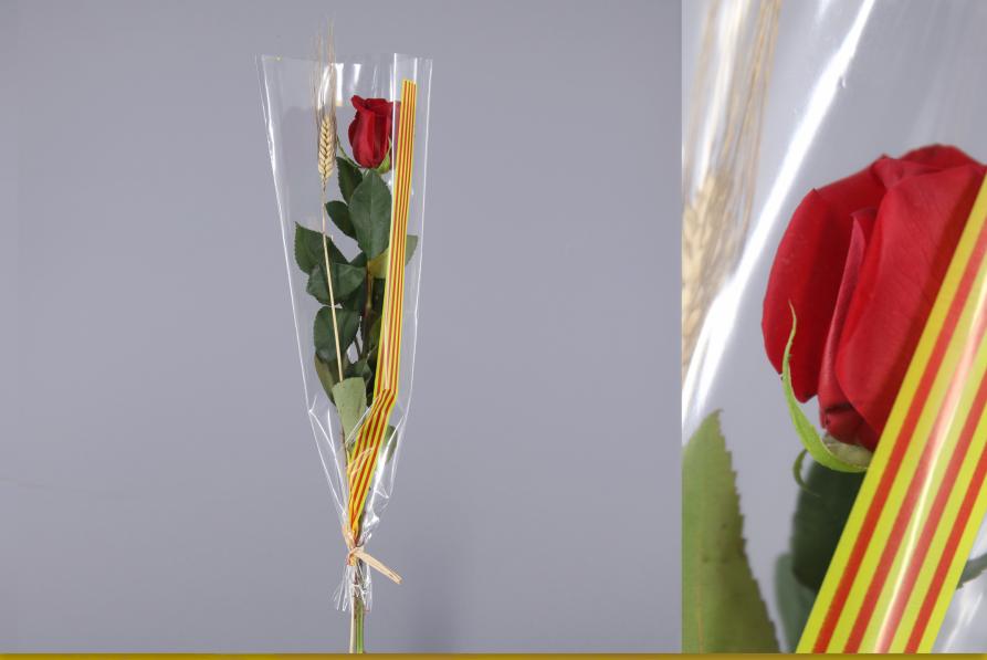 rosas rojas de sant jordi