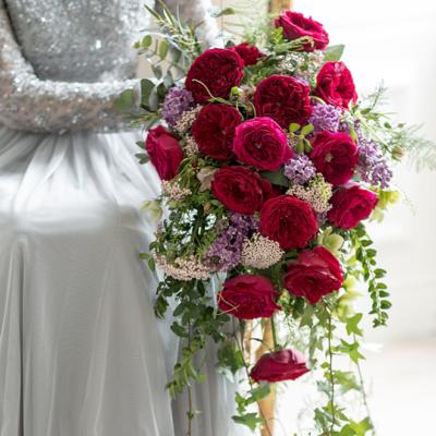 rosa roja de jardin