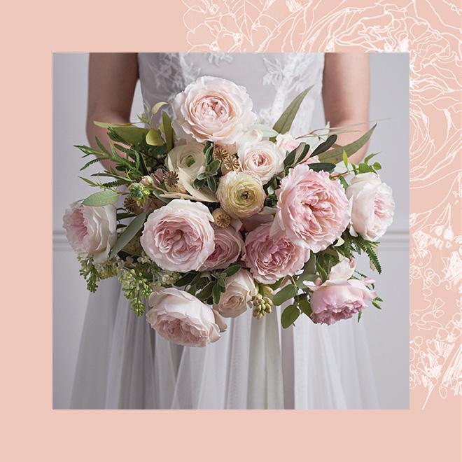 rosa de jardin color rosa palo variedad David Austin Keira