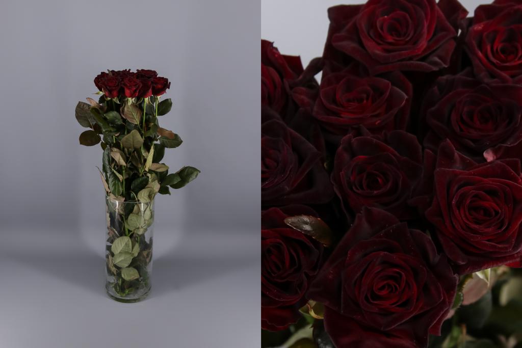 rosas negras.