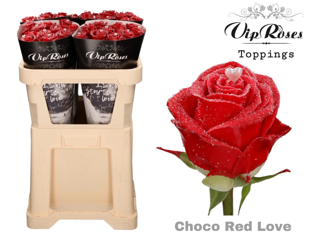 rosa choco red love