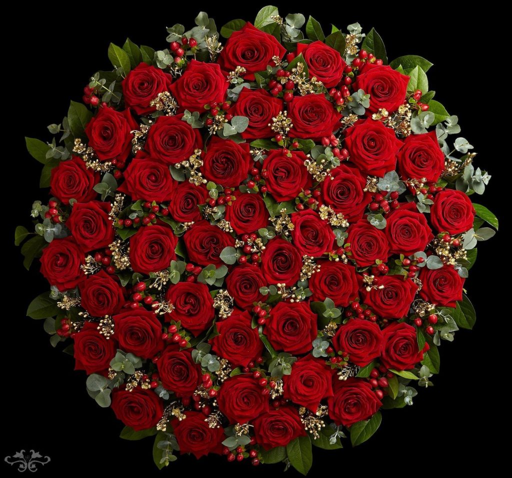 rosas rojas san valentin