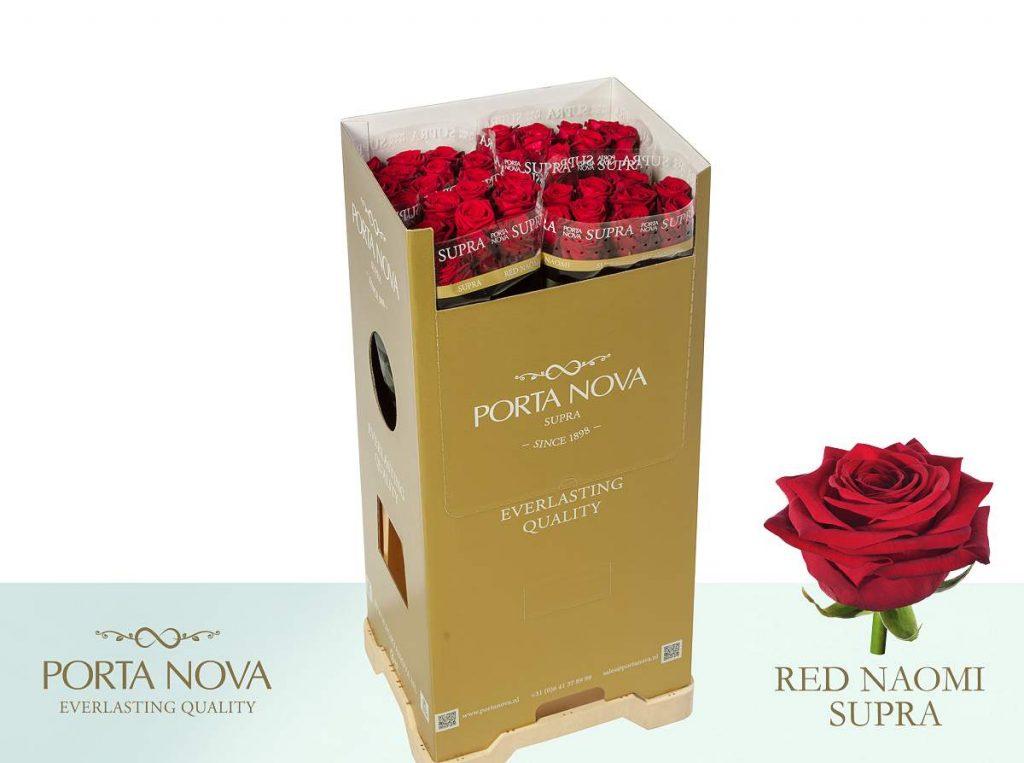 Red Naomi de Porta Nova